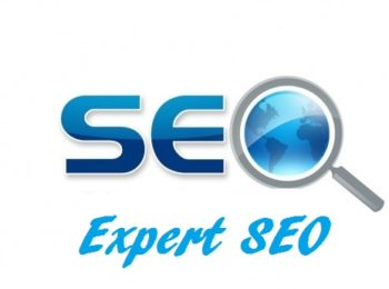 expert-seo-formation-referencement-naturel